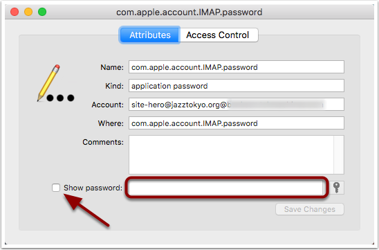 Show Password Option